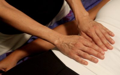 Level 3 – Reiki Master/Teacher Workshop